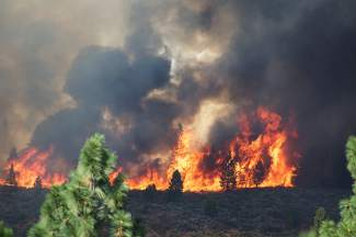 A wildfire burned through brush and sage Monday afternoon east of the dam at Boca Reservoir, charring 84 acres before crews extinquished the blaze.