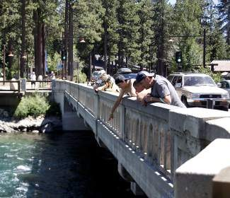People lean over the famed Fanny Bridge in Tahoe City. The bridge earned its name due to the ability of passing motorists and pedestrians to see people's fannies as they stare at the Truckee River.