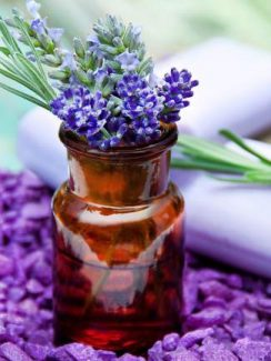Lavender, known best for it's soothing properties, offers many health benefits.
