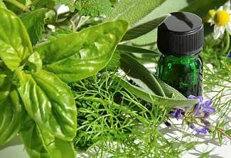 Basil essential oil helps detoxify the body and lift spirits.