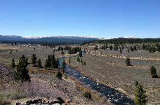 Courtesy Becky Bucar / Town of Truckee