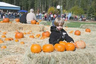 A wonderful world of pumpkins and festivities awaits at the Fall Festival and Pumpkin Patch.