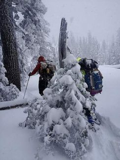 Nevada County Sheriff's Search and Rescue Team members locate and transport a lost skier and his canine companion Feb. 7 in white-out conditions.