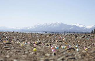Commons Beach in Tahoe City was covered in thousands of plastic eggs Saturday morning.