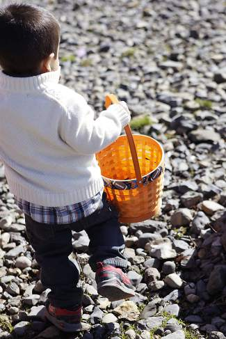 This boy searches for unclaimed plastic Easter eggs on Commons Beach.