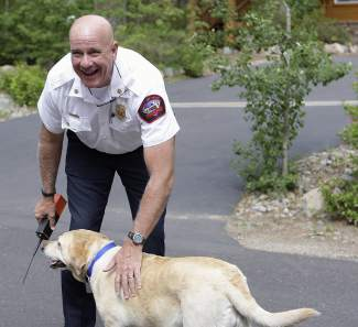 North Lake Tahoe Fire Protection District Chief Mike Brown greets Molly, a 5-year-old English Lab owned by Incline Village resident Greg McKay, before she and another dog were rescued by Washoe County Animal Services.