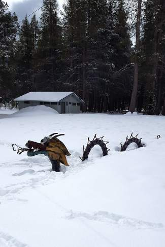 Snow Serpent: A dragon-like creature lurks in the snow at Donner Lake's West End Beach.