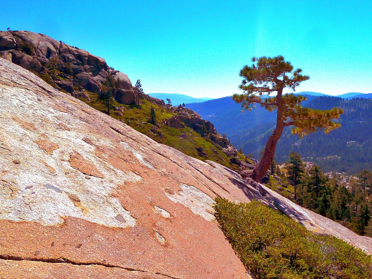 What A View: Hiking up Donner Peak in late August always has its rewards.Photo: Michael Monroe