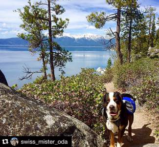 We found a new hike! Submitted using #TahoeSnaps on Instagram.