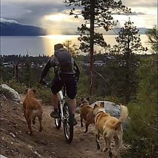 Vansickle sunset. Just ride towards the light. Submitted using #TahoeSnaps on Instagram.