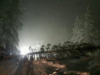 This image of a fallen tree that knocked out a power line Tuesday night near Coachland RV Park on Pioneer Trail, was sent to us by Liberty Utilities.