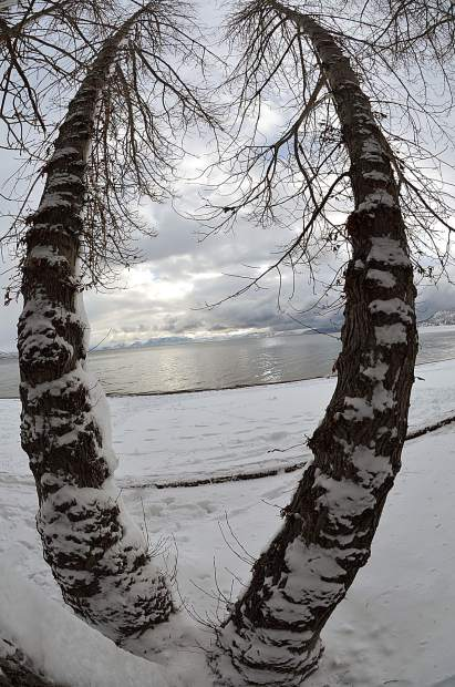 Bend It Like Tahoe: Clouds above Lake Tahoe are seen between two trees at Incline Beach in mid January. A Nikon 8.5mm fisheye lens was used to get this effect. Photo: William T. Doyle