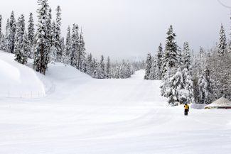 Male snowboarder, 43, dies after falling into tree well at Tahoe-area resort