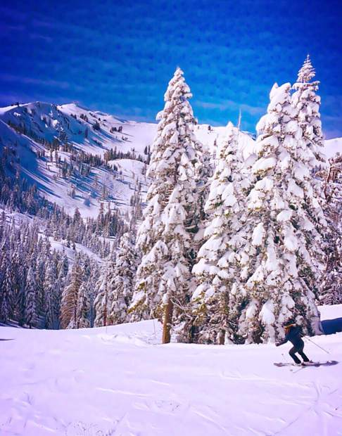 Bluebird & Beautiful: Kate Allen takes in some bluebird skiing at Alpine Meadows after the January storms. Photo: Tony Rabinowitz