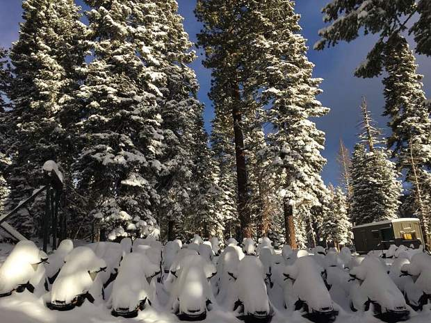 A Fresh Blanket: The sleds at Tahoe Snowmobile Tours are a bit covered after an early February storm. Photo: Dan Light