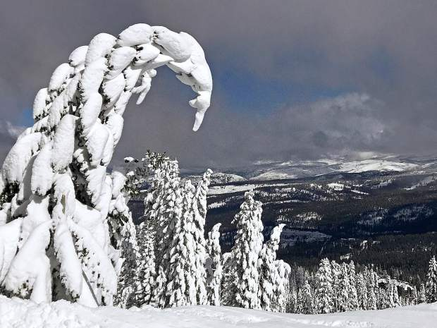 Curvy & Creative: Looking east from the top of Northstar California after a big storm on Feb. 12. Photo: Don Beaty