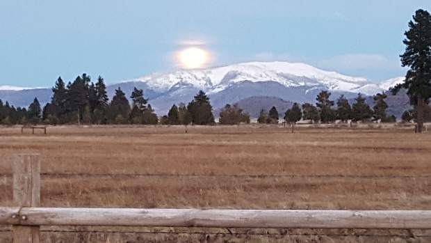 Setting The Scene: The moon rises over the beautiful Sierra Valley, as seen in nearby Calpine, Calif., in early February. Photo: Joanie Engel