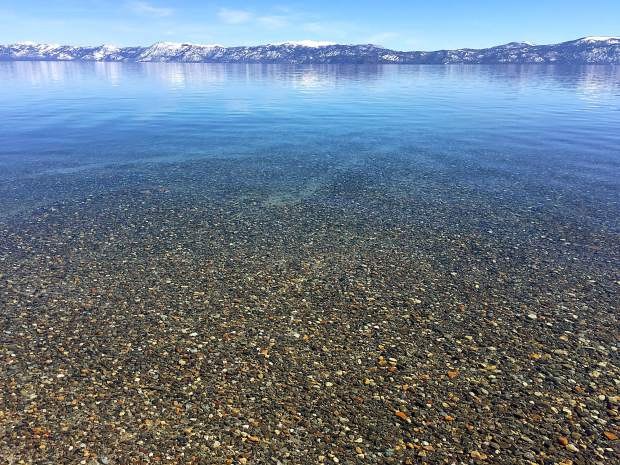 Beyond Beauty: A look the waters of Lake Tahoe during a snowshoeing tour at Sugar Pine Point State Park on the West Shore on March 13. Photo: Gale Rankin