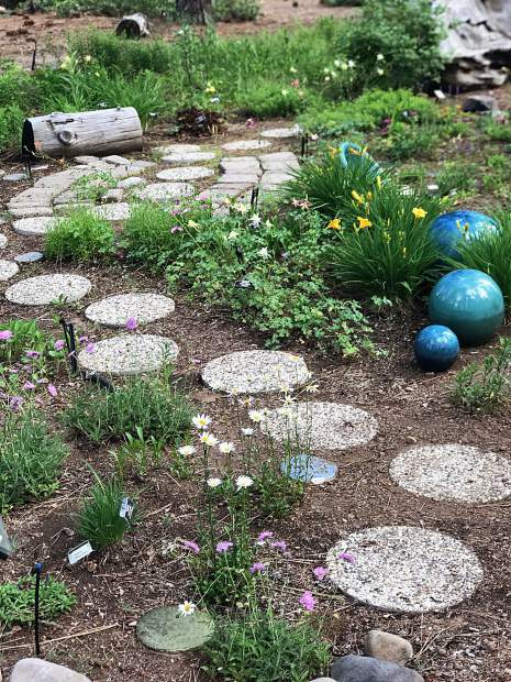 Incline Village S Demonstration Garden Offers Weekly Classes