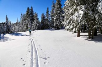 Nevada Nordic brings cross country skiing to the Nevada side of Lake Tahoe