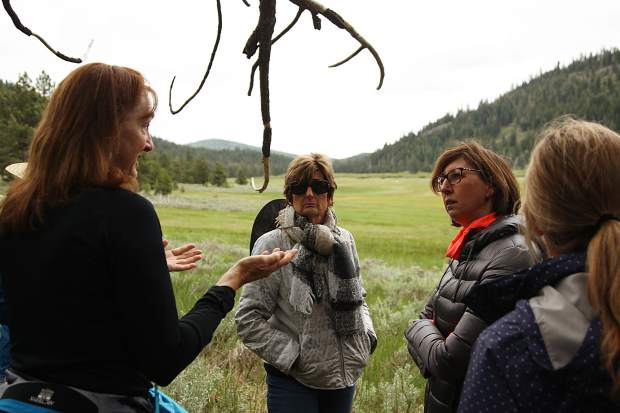 Patricia Kiehl, an agriculture instructtor at Sierra College and docent on the hike, explained the ecology of the area to guests Carolyn Sconza and Julie Cater.