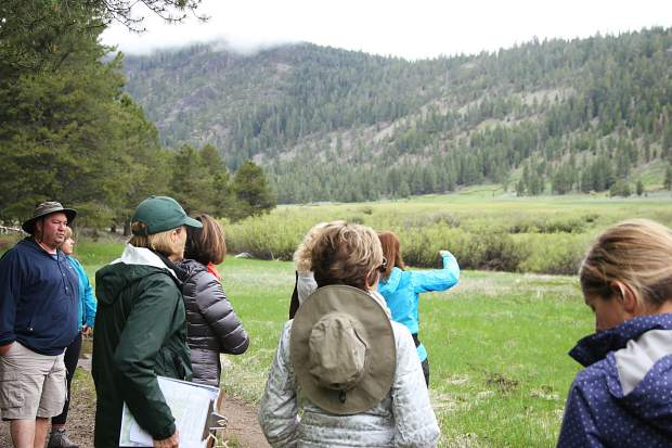Brita Tryggvi, a Tuckee Donner Land Trust Board Memebr and docent helped lead the hike through Lower Carpenter Valley on Satuday.