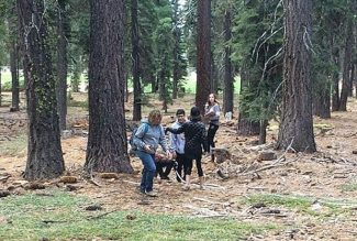 North Tahoe Middle School students design experiments to save sugar pines
