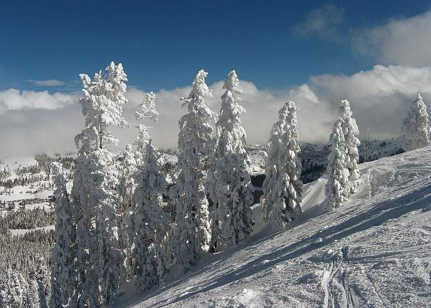 Epic season and now blue skies. Great view from atop Mt. Lincoln at Sugar Bowl (taken March 10).