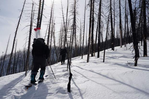 Kelly Gleason, assistant professor of environmental science and management at Portland State University, and crew head out in a recently burned forest to collect snow samples.