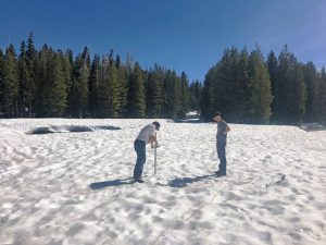 June snow survey in the Sierra a rarity