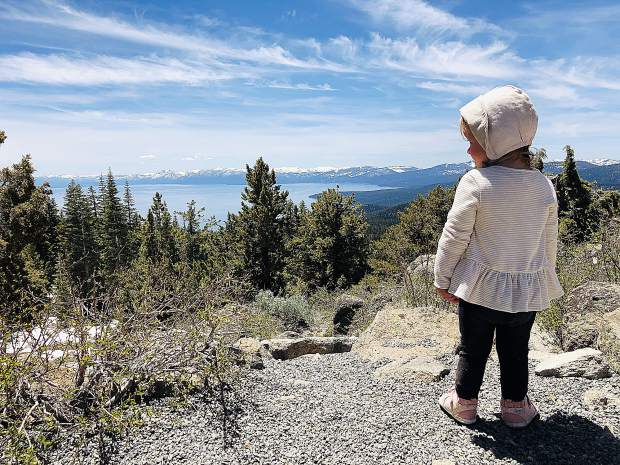 21 month old Truckee toddler, Sorell Davis, enjoying the view atop Martis Peak.