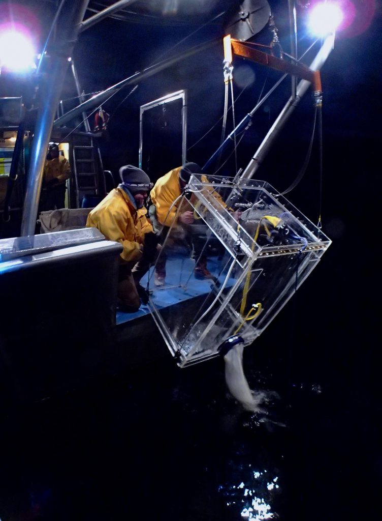 Scientists from UC Davis' Tahoe Environmental Research Center night trawl for invasive mysis shrimp for a research project at Lake Tahoe.