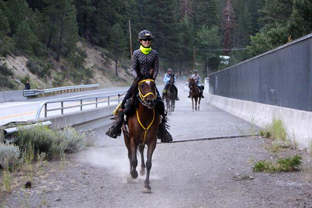Riders make their way toward Squaw Valley after crossing Highway 89 near the start of the Tevis Cup.