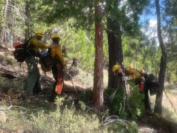 Truckee Hotshots saw teams cutting saw line ahead of the crew during the recertification.