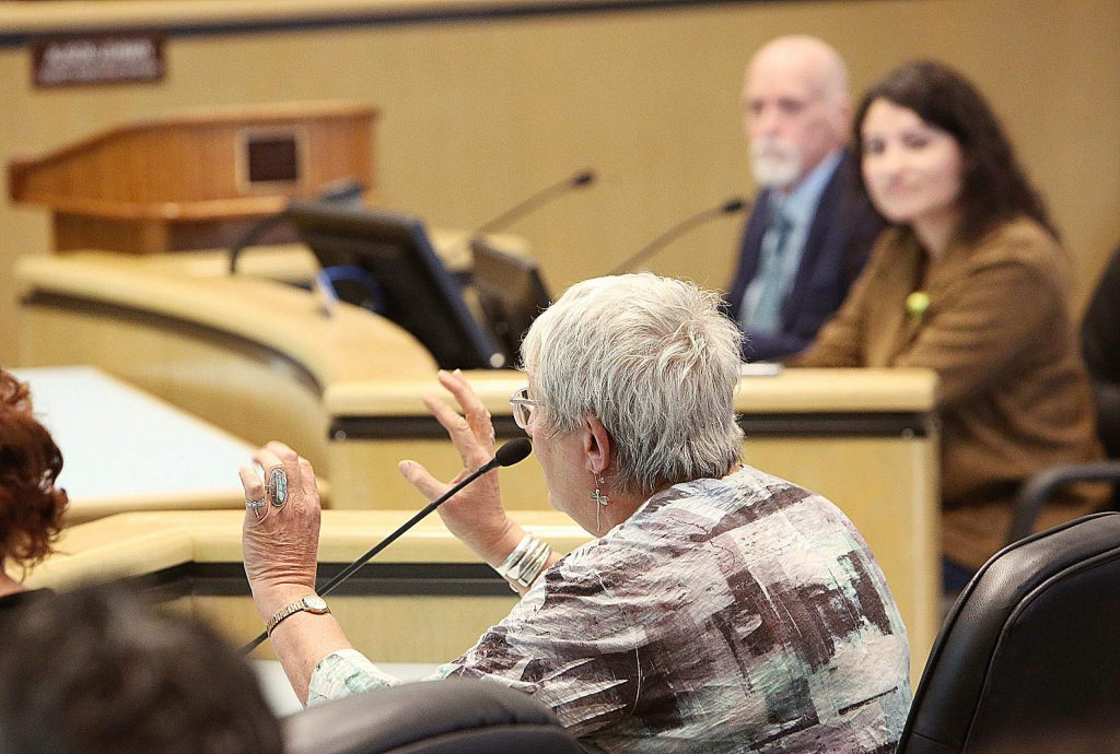 Community advocate Pinky Zalkin gives comments to the Board of Supervisors during Tuesday's meeting.