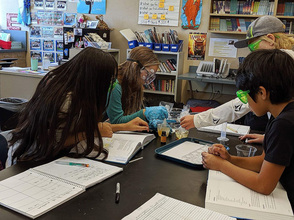 Young scientists at North Tahoe School hard at work, conducting an experiment!