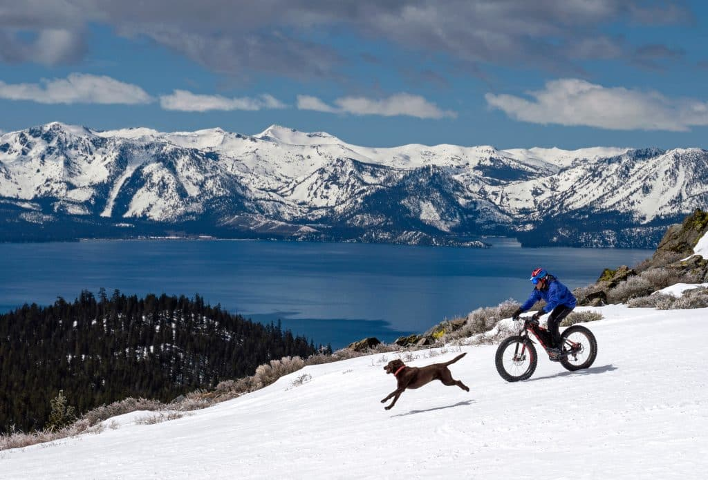 Anthony Cupaiuolo rides a fat bike across Tahoe terrain as his dog Emmie keeps him company.
