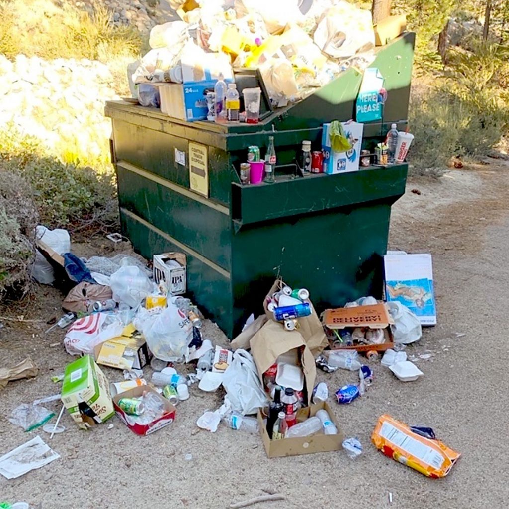 Trash cans are becoming full quickly so people leave their trash next to dumpster, attracting wildlife.