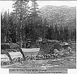In 1865, 85 train car loads of freight were unloaded at Cisco each day and put onto wagons for the trek over the summit.